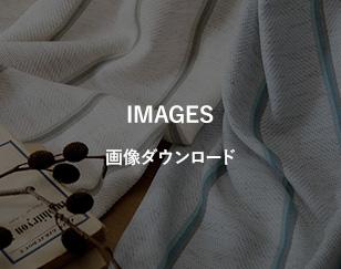 画像ダウンロード
